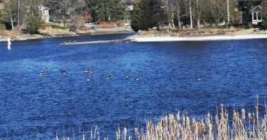 Spring showers increase water levels in Rideau Valley Watershed
